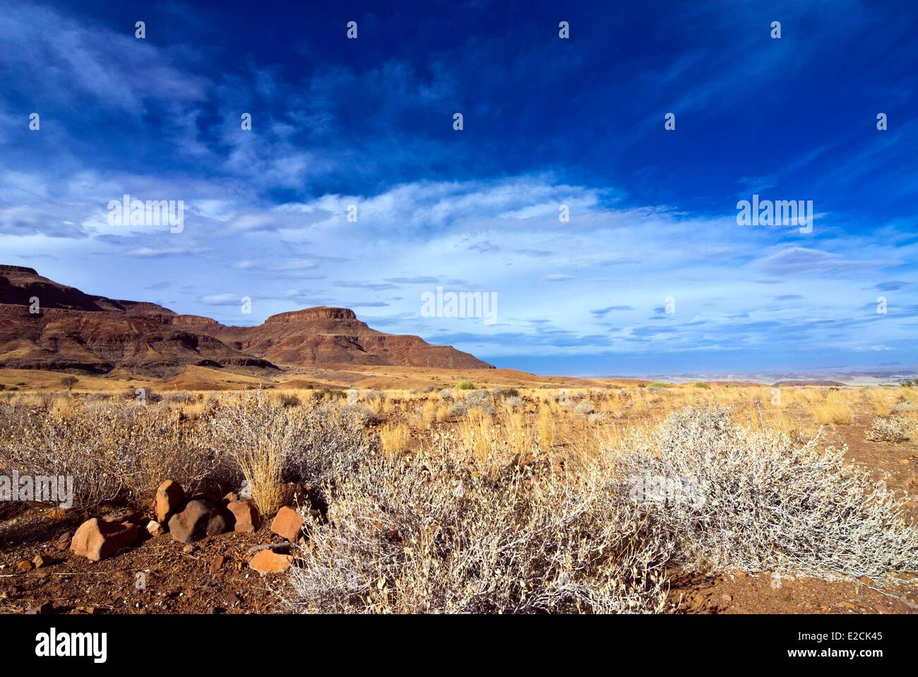 Namibia, Kunene region, Damaraland, Torra Conservancy, Huab River Valley area - Stock Image