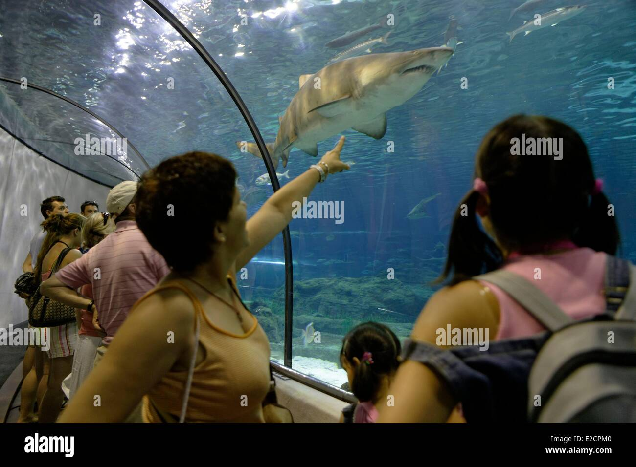 Spain Catalonia Barcelona Moll d'Espanya Barcelona Aquarium underwater tunnel - Stock Image