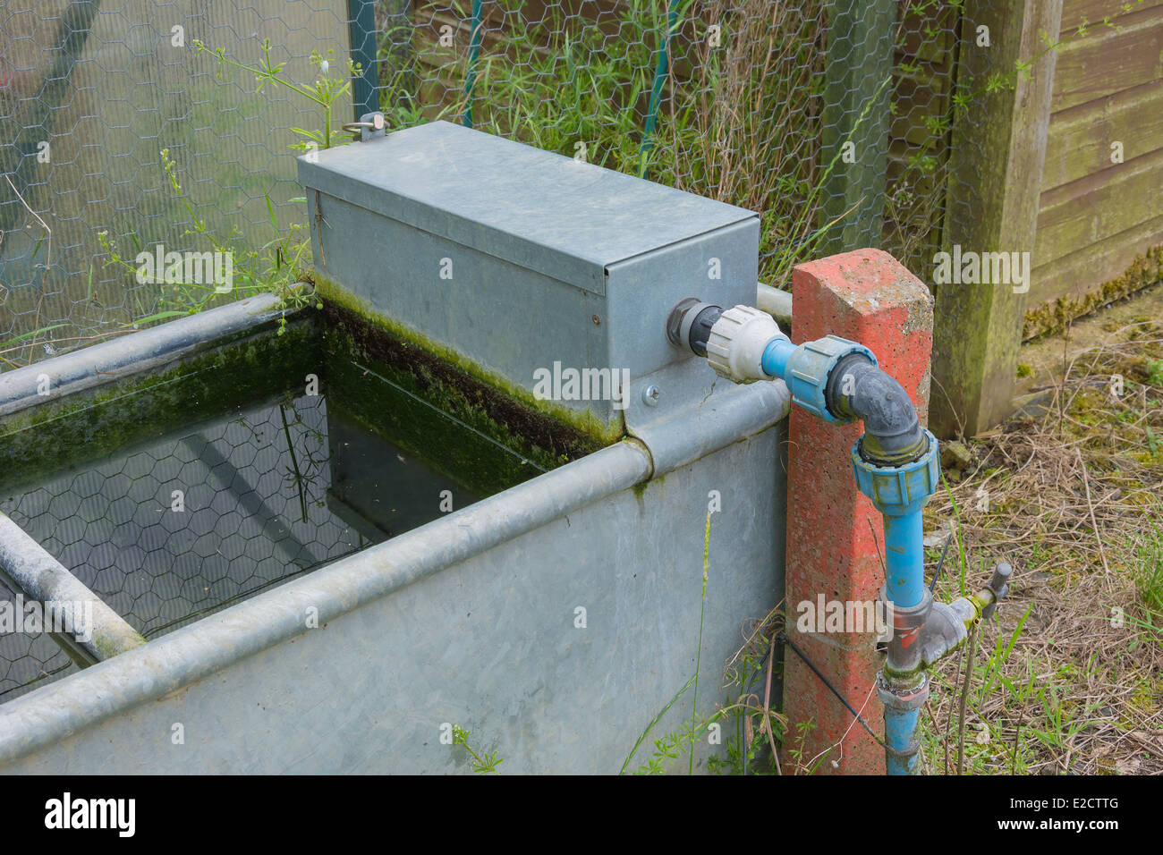 Garden water trough for storing water with automatic cistern for filling - Stock Image