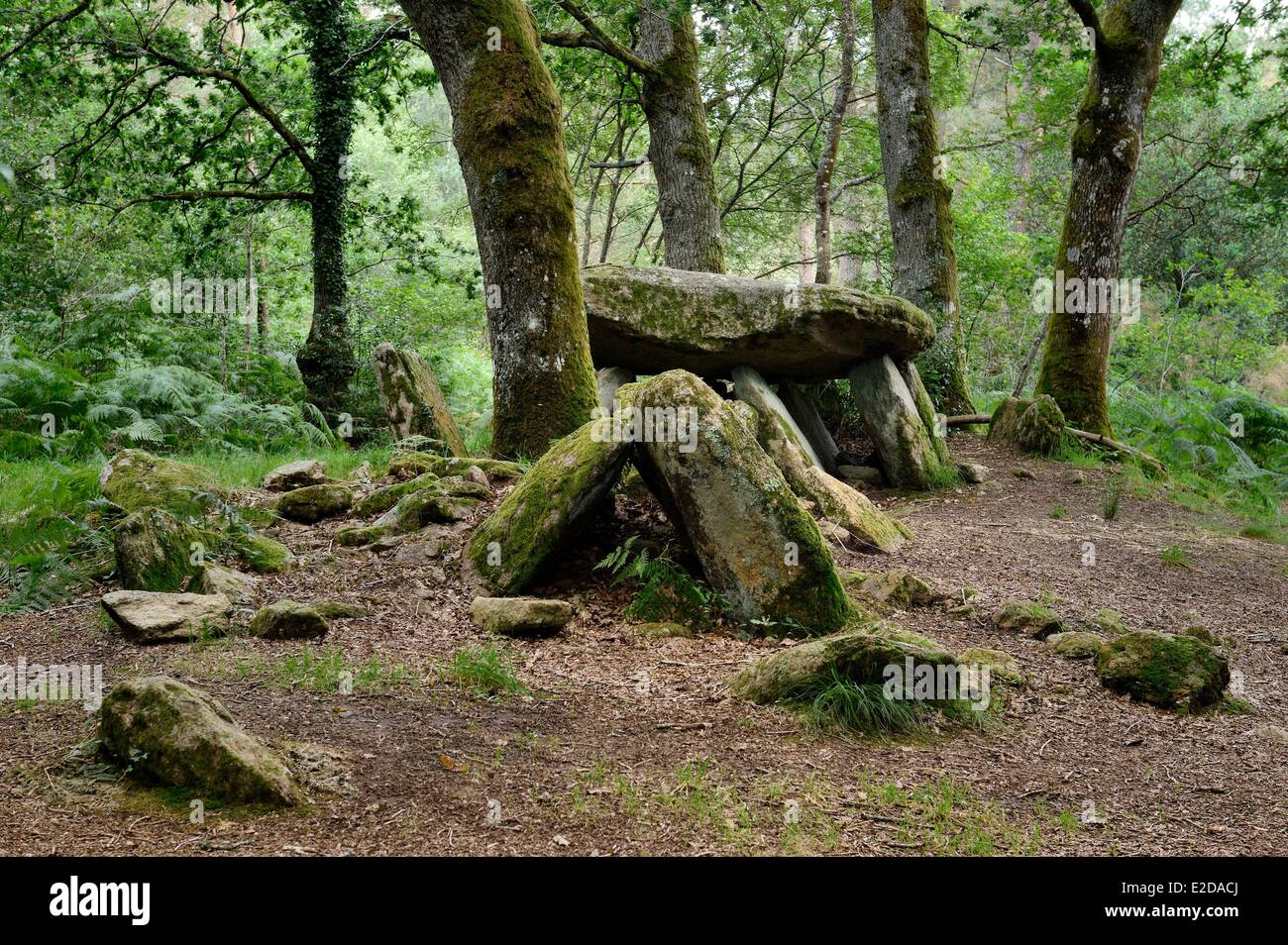 France, Morbihan, Loge au loup dolmen, probably more then 4500 years old - Stock Image