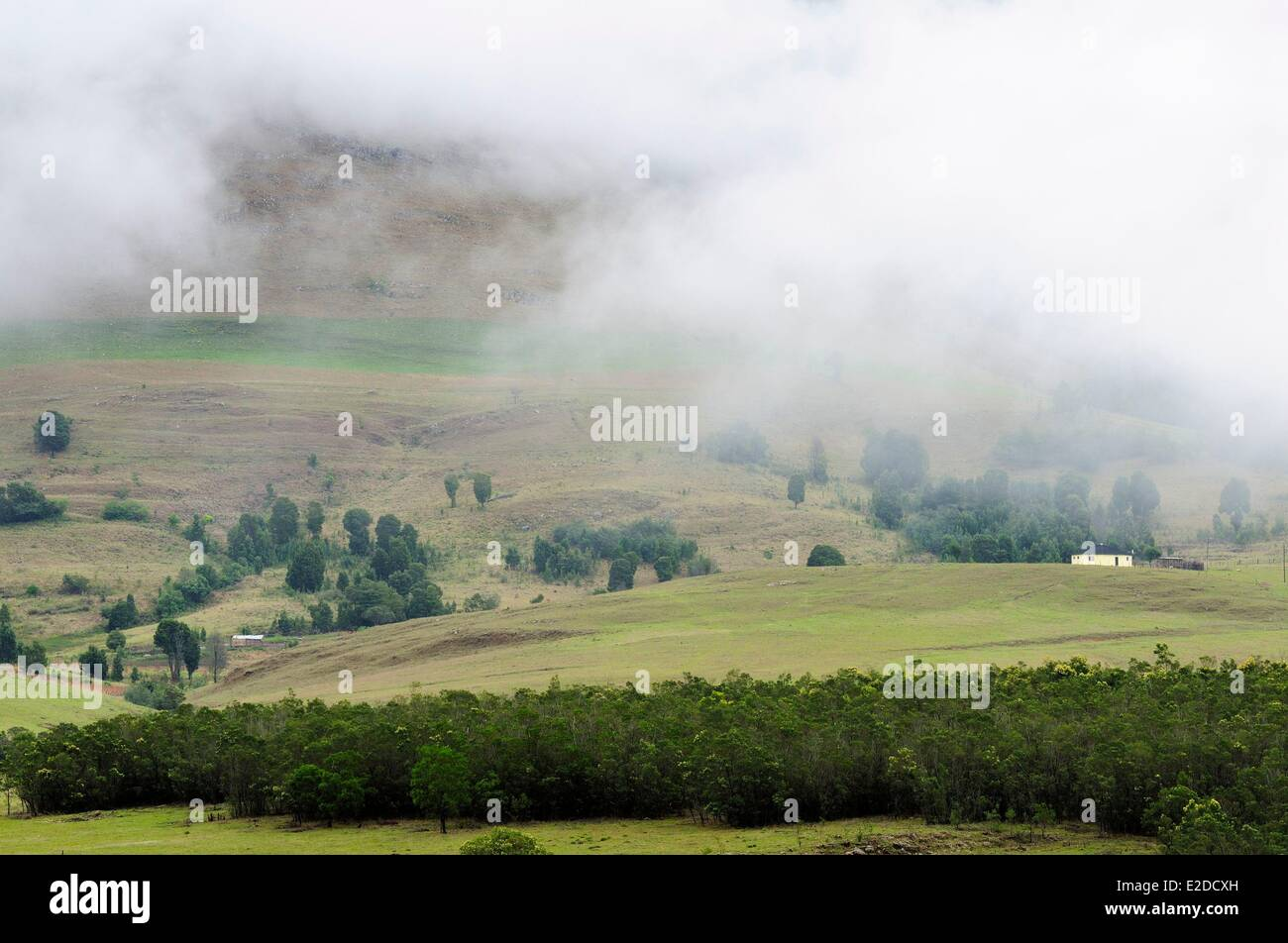 Swaziland Hhohho district the countryside north of Mbabane the capitale - Stock Image