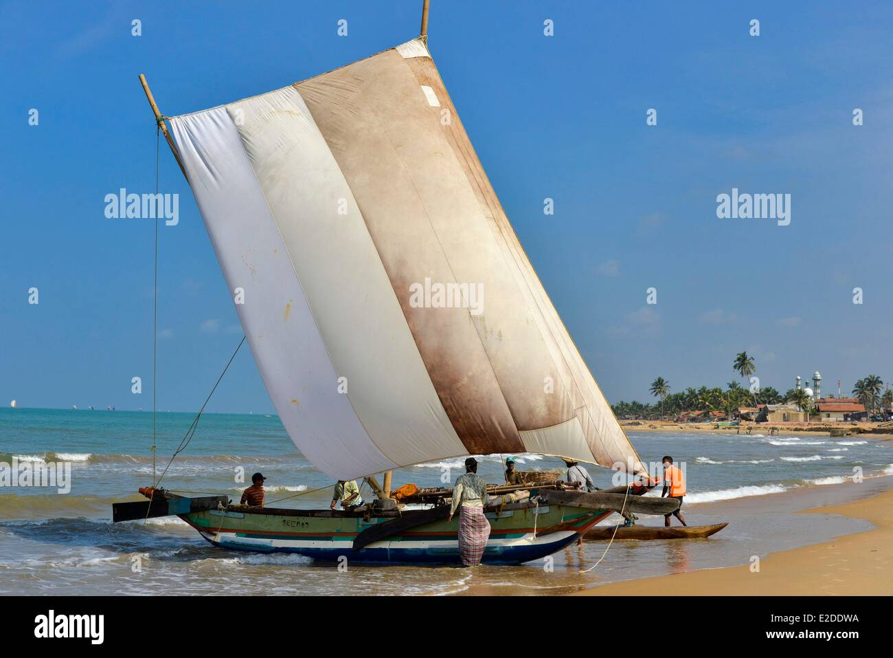Sri Lanka Western Province Gampaha District Negombo Sailing catamaran accosting of a fishing boat on a beach - Stock Image
