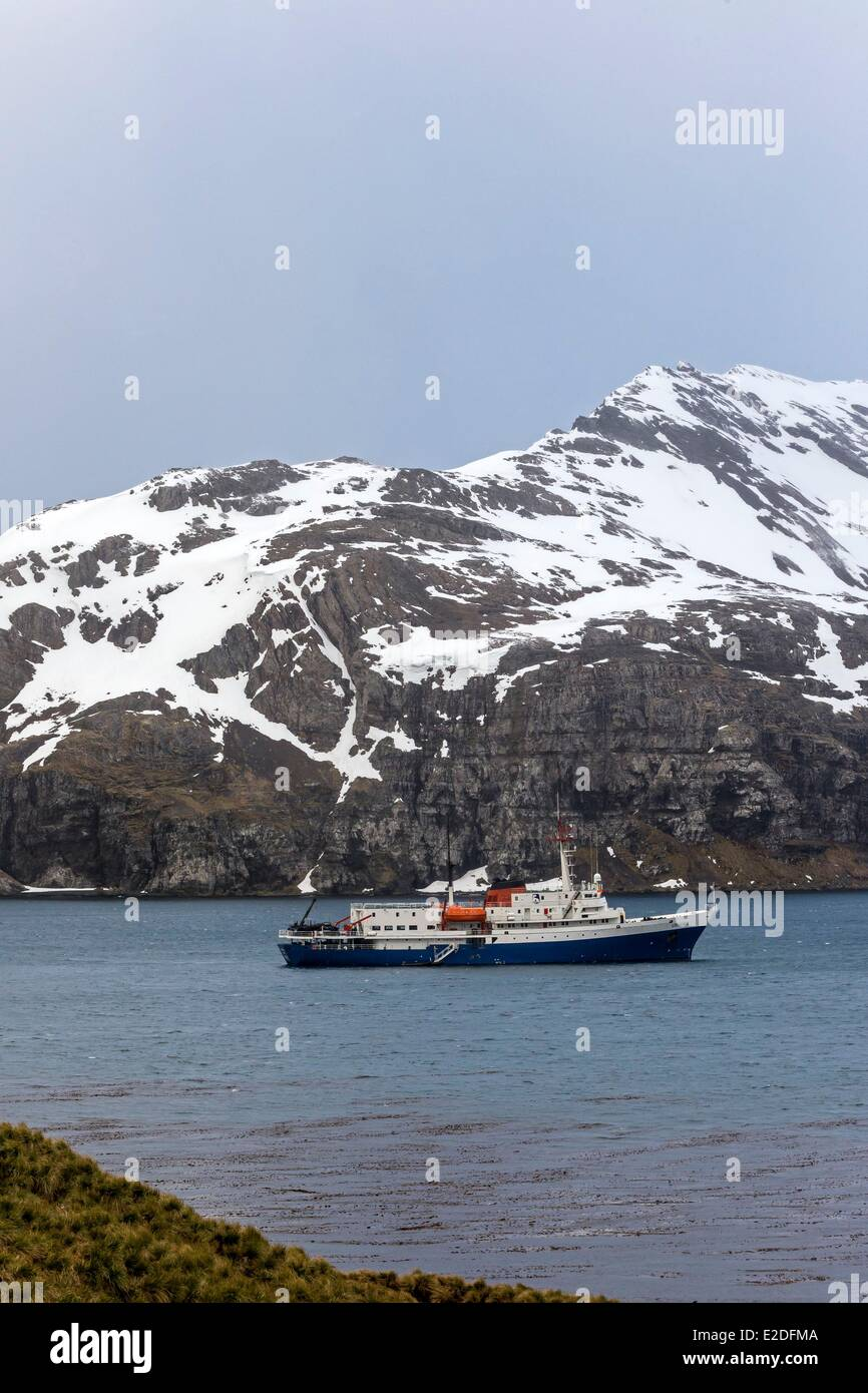 Antarctic, South Georgia Island, Rosita Harbour - Stock Image