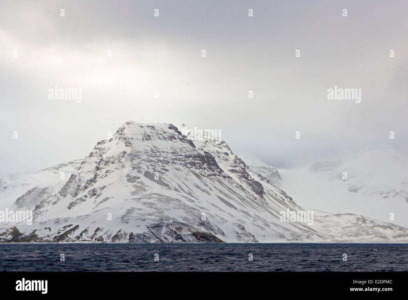 Antarctic, South Georgia Island, Salysbury plains - Stock Image