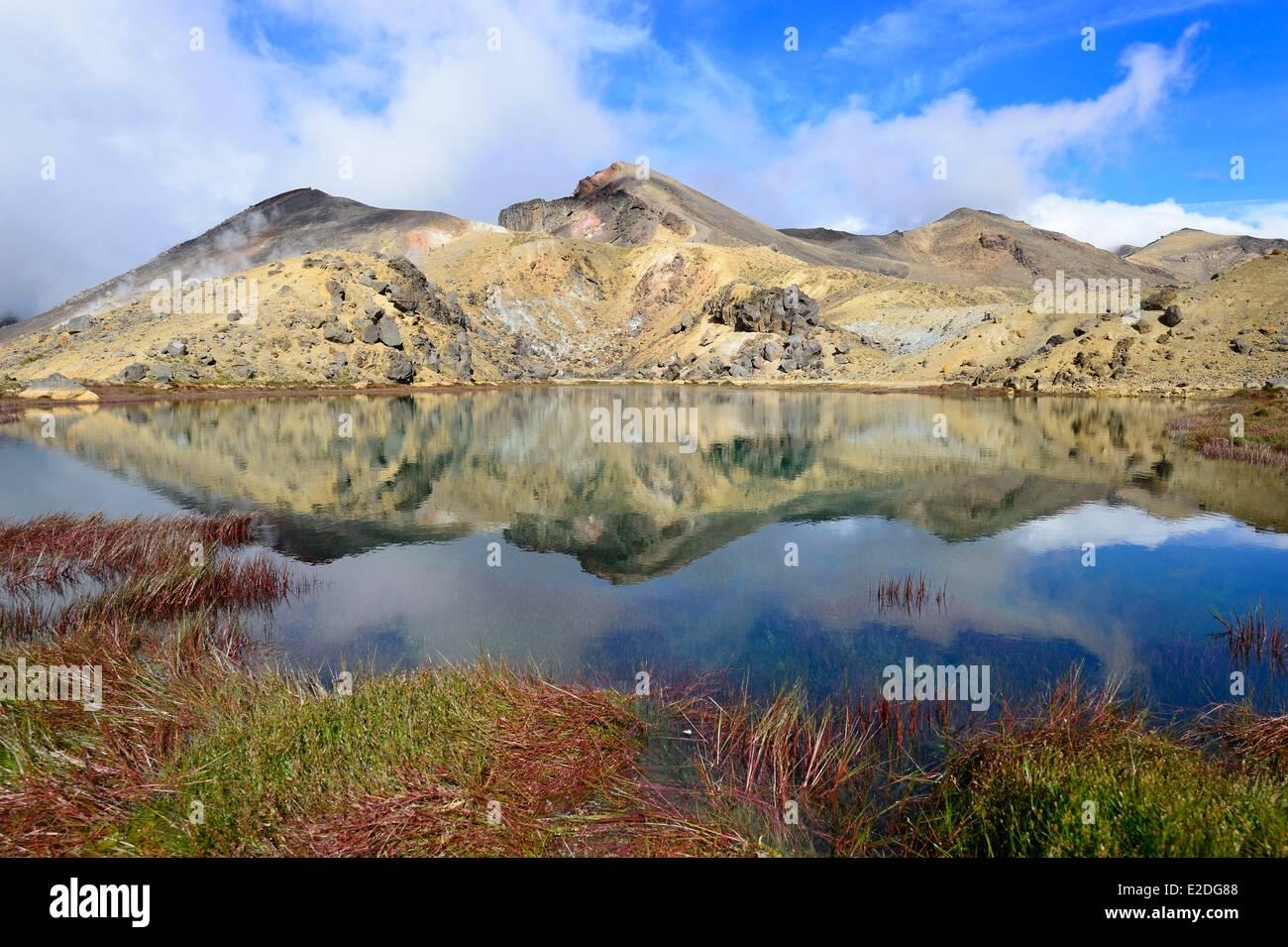 New Zealand North Island Tongariro National Park is the first national park in New Zealand and the fourth to emerge - Stock Image