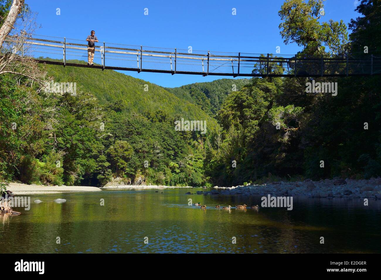 New Zealand North island Wellington Kaitoke regional Park where some scenes of the Lord of the Rings were filmed - Stock Image