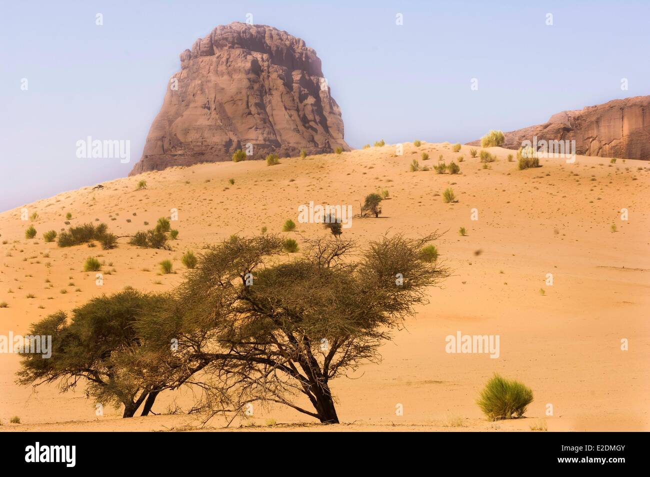 Chad Southern Sahara desert Ennedi massif Birdjigol well - Stock Image