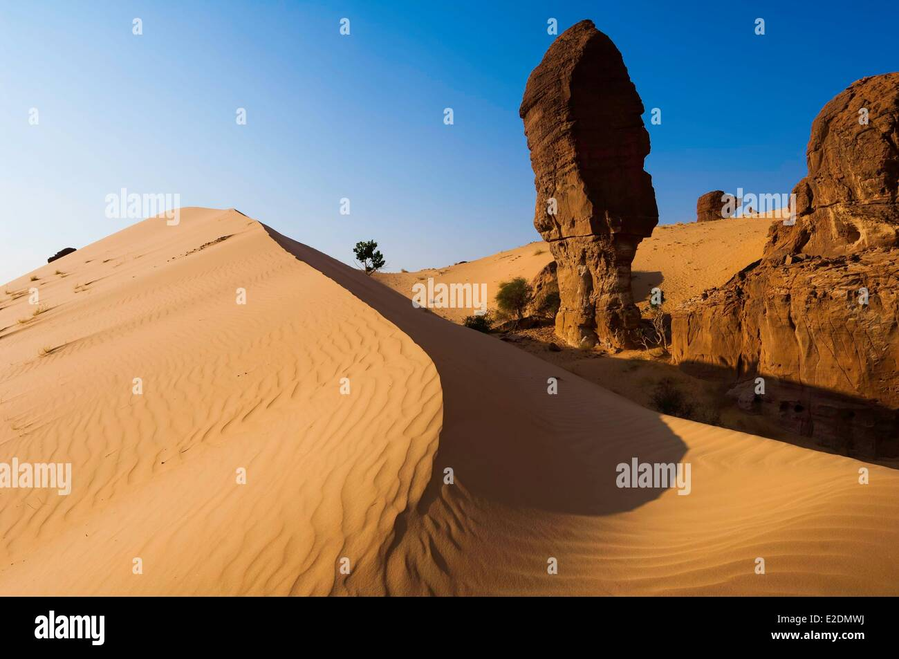 Chad Southern Sahara desert Ennedi massif Archei sector dunes and sandstone monoliths - Stock Image
