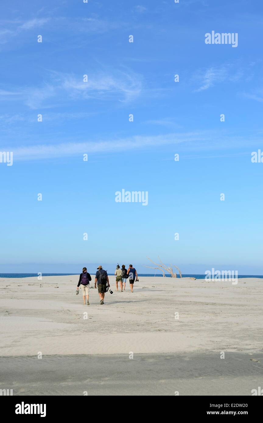 New Zealand, South island, Tasman region, 4x4 tour bus from Collingwood at Farewell Spit, with the agency Farewell - Stock Image
