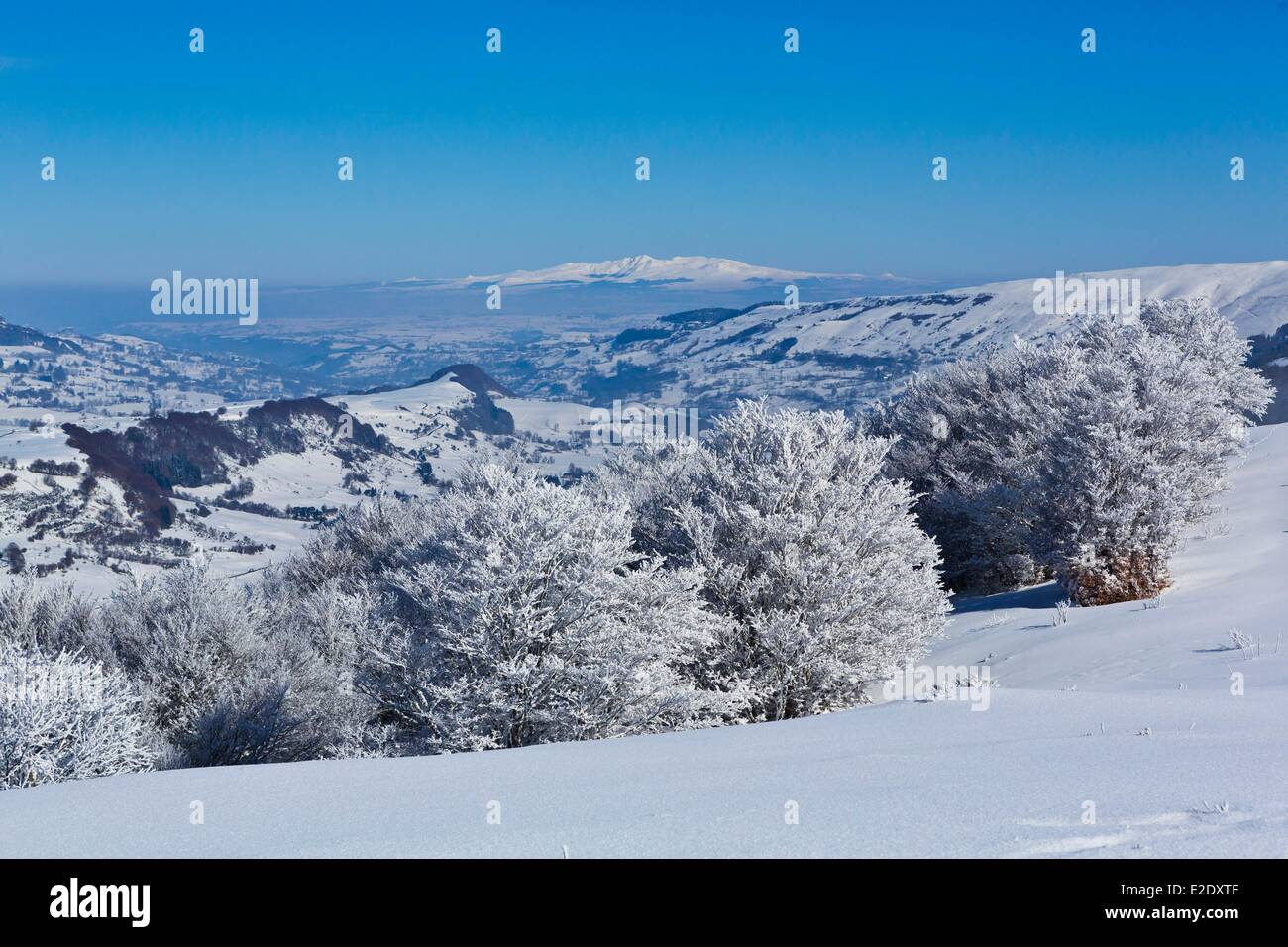 France Cantal Serre path Impradine valley Sancy massif in the background Parc Naturel Regional des Volcans d'Auvergne (Auvergne Stock Photo