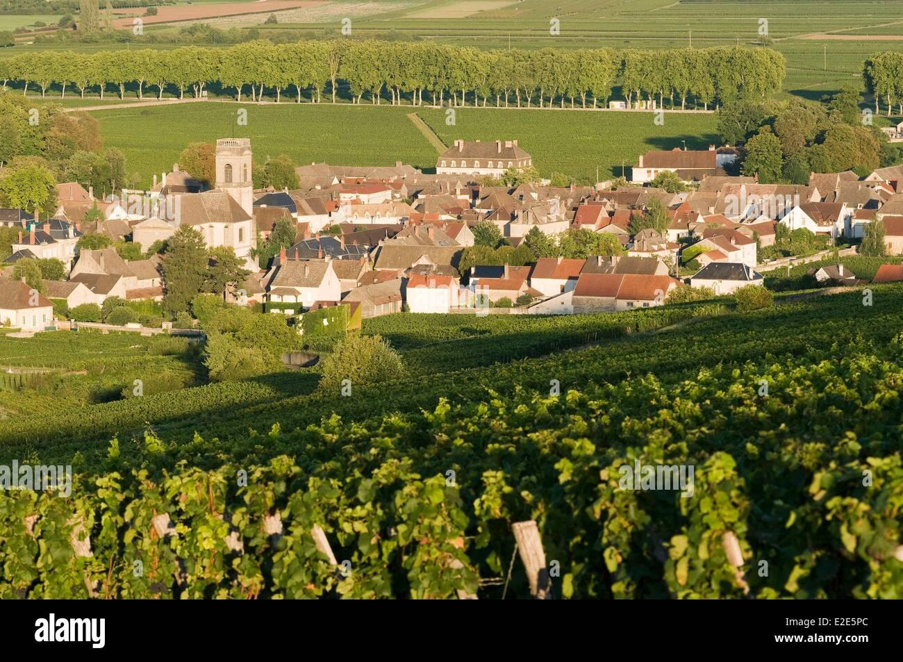 France, Cote d'Or, Pommard, Cote de Beaune, famous vineyard of Burgundy road, village and ChΓteau de Pommard - Stock Image