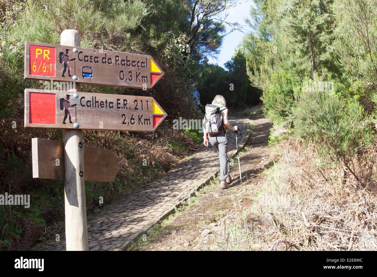 Portugal, Madeira island, hicker on the way to the levada of the 25 springs - Stock Image