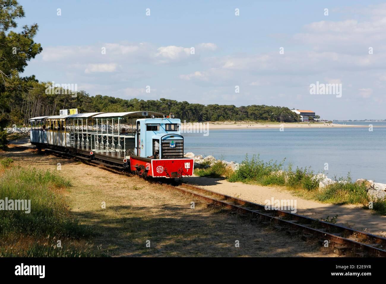 France, Charente Maritime, Ile d'Oleron, Pointe de Maumusson, small train of Saint-Trojan-Les-Bains - Stock Image