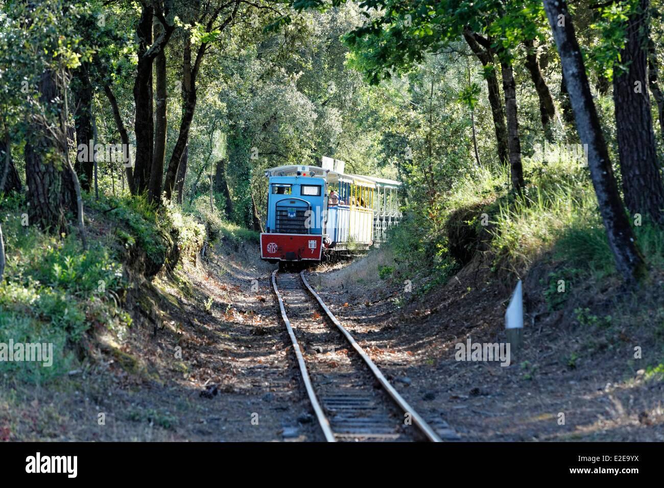 France, Charente Maritime, Ile d'Oleron, small train of Saint-Trojan-Les-Bains - Stock Image