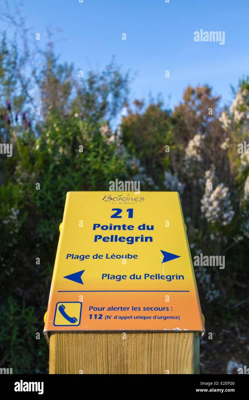 France, Var, Bormes les Mimosas, descriptive border on the littoral path of the point of Pellegrin - Stock Image