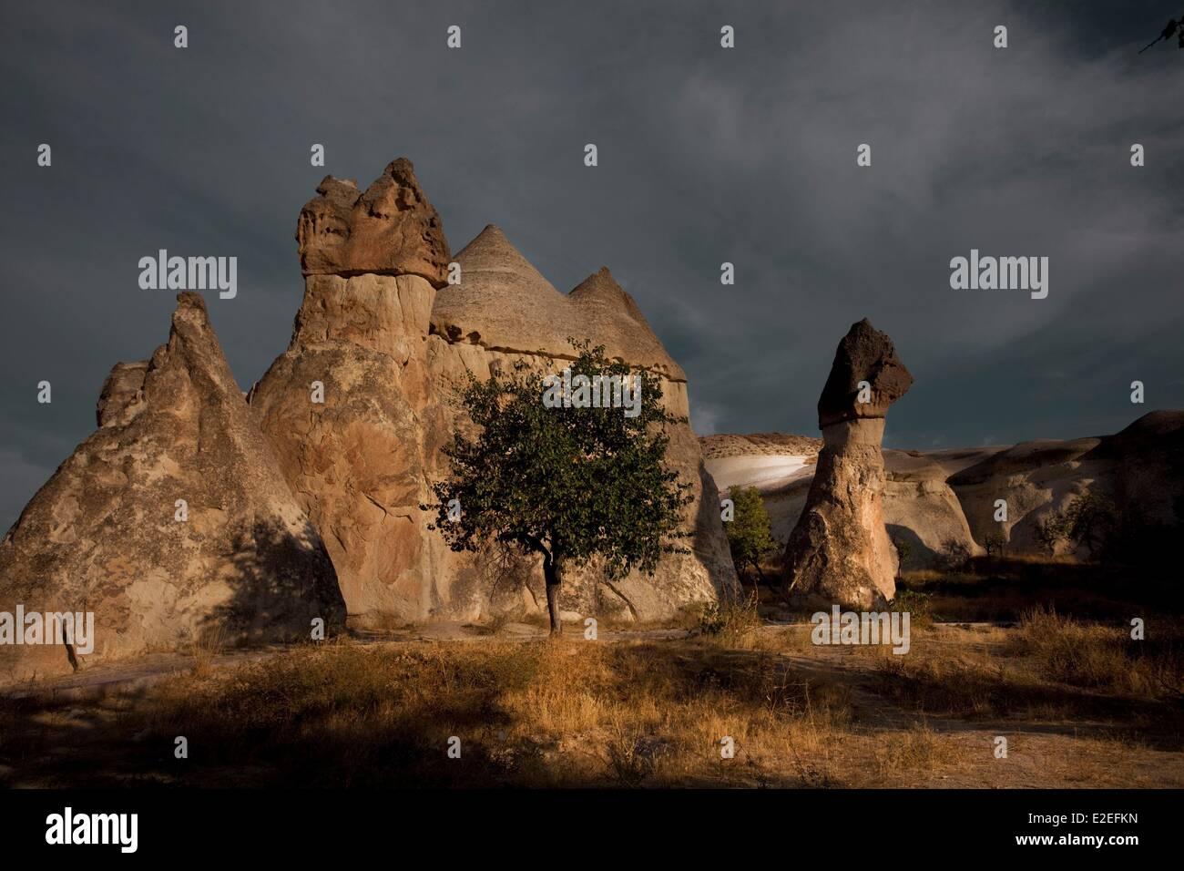 Turkey, Central Anatolia, Capadoccia, Pasabagi valley, listed as World Heritage by the UNESCO - Stock Image