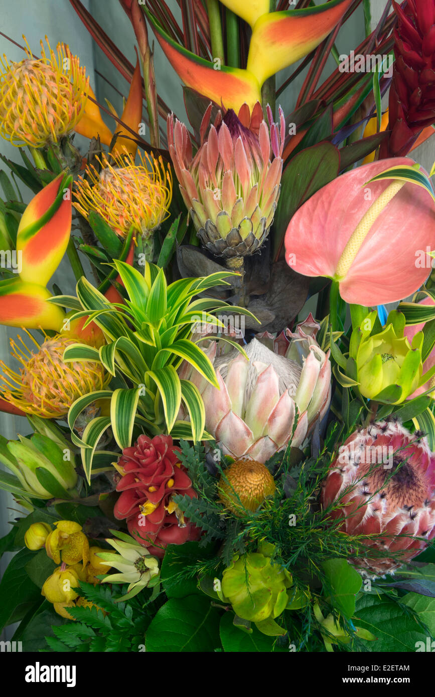 Display of tropical flowers. bouquet of tropical flowers Maui, Hawaii - Stock Image