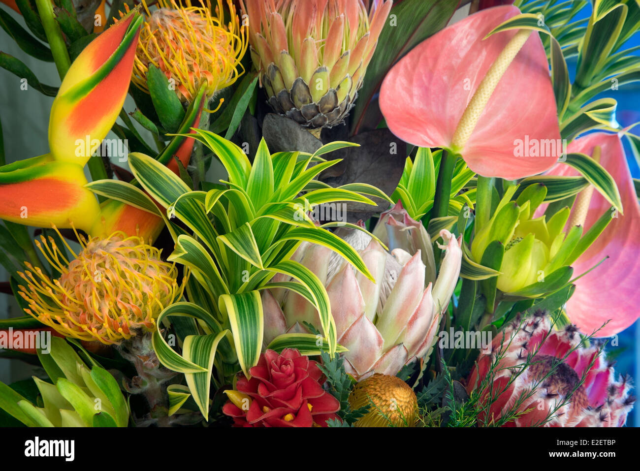 Display of tropical flowers. bouquet of tropical flowers Maui ...