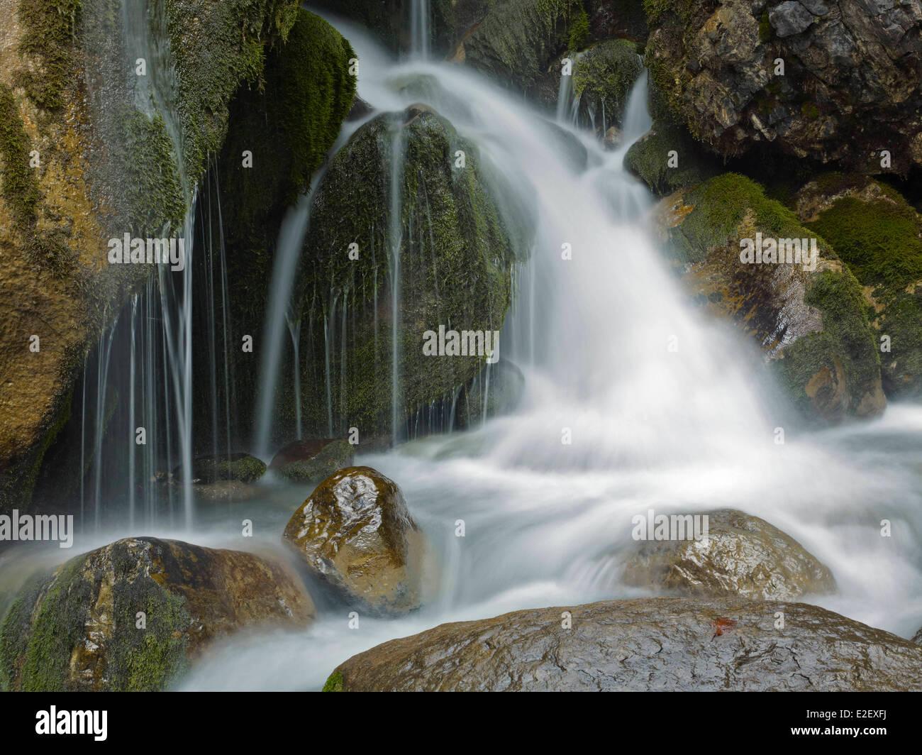 France, Haute Savoie, Chamonix, water movements, Arveyron gorges, Chamonix valley - Stock Image