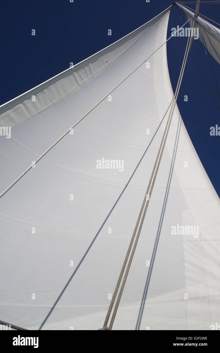 Mainsail open in the wind - Stock Image