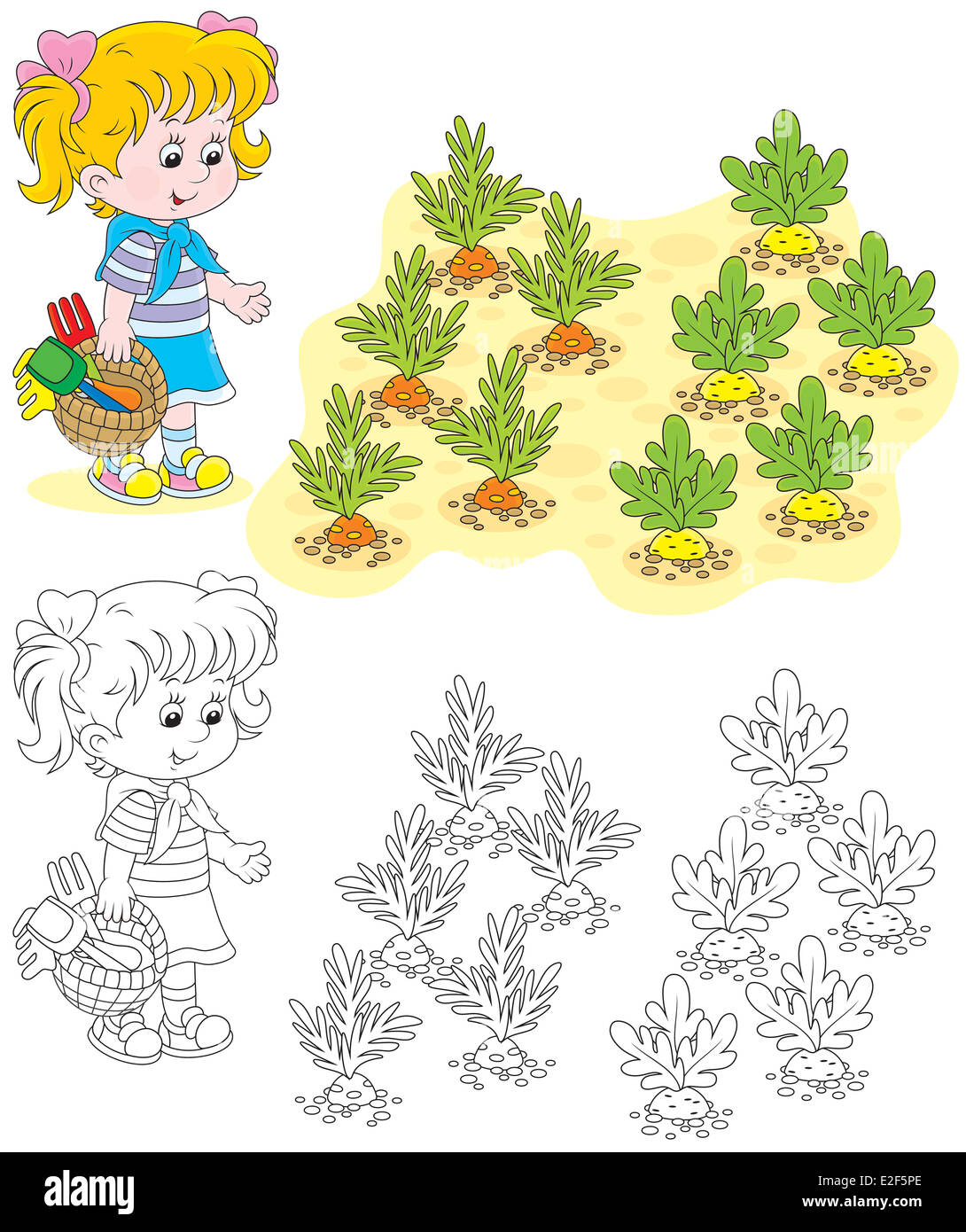Child Drawing Kitchen Garden With Vegetables Stock Photos & Child ...