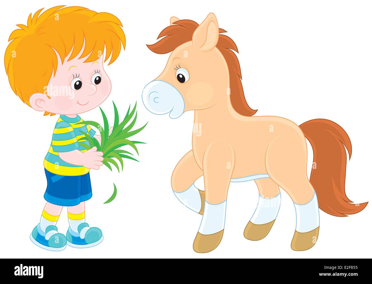 Boy feeds a pony - Stock Image