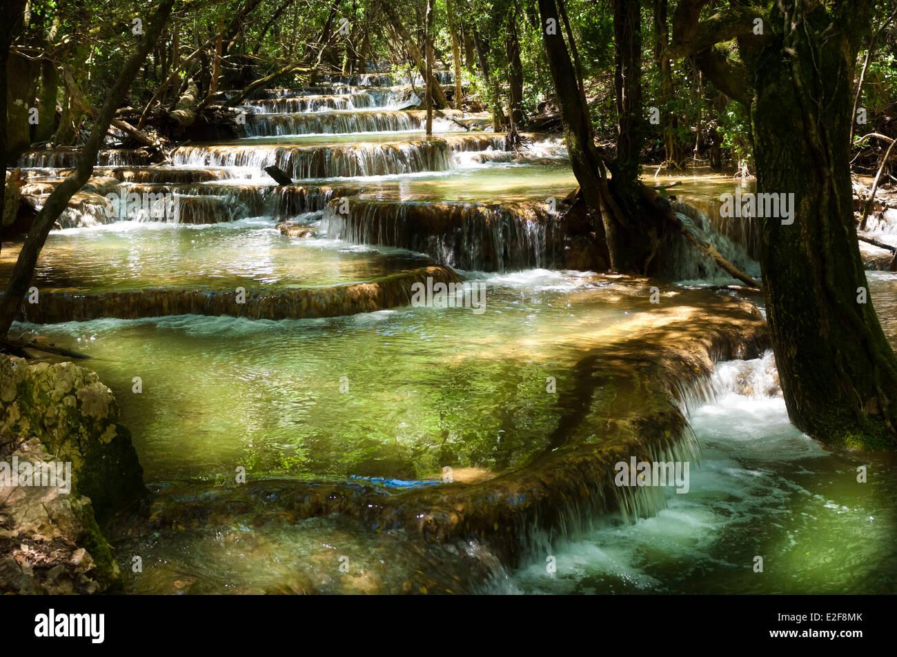 France, Var, Nans les Pins, calcite pools of the Huveaune springs, Sainte Baume range - Stock Image