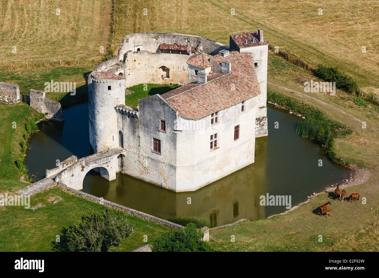 France, Charente Maritime, Saint Jean d'Angle, castle of the 12th century (aerial view) - Stock Image