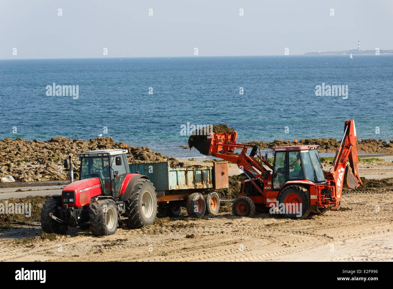 France, Charente Maritime, disposal site algae on the beaches - Stock Image