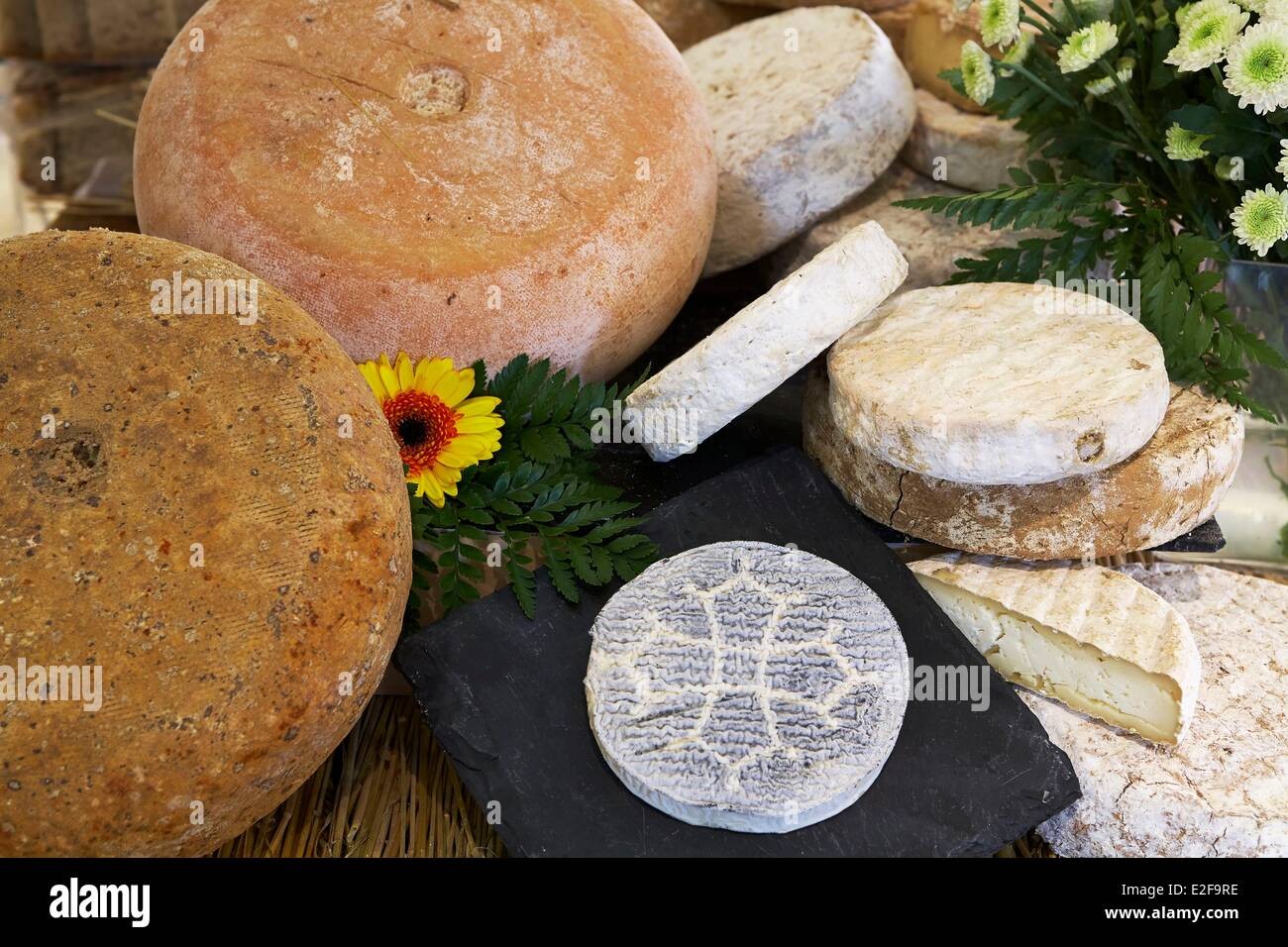 France, Haute Garonne, Toulouse, Xavier Fromagerie, Tomme de Ossau Iraty sheep and Goat cheese decorated with the - Stock Image
