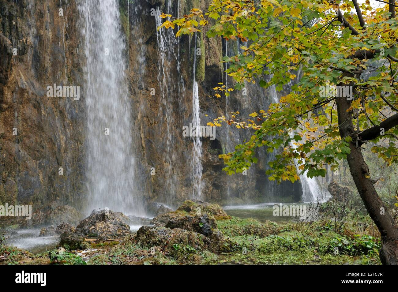 Croatia, Plitvice Lakes National Park listed as World Heritage by UNESCO, upper lakes - Stock Image