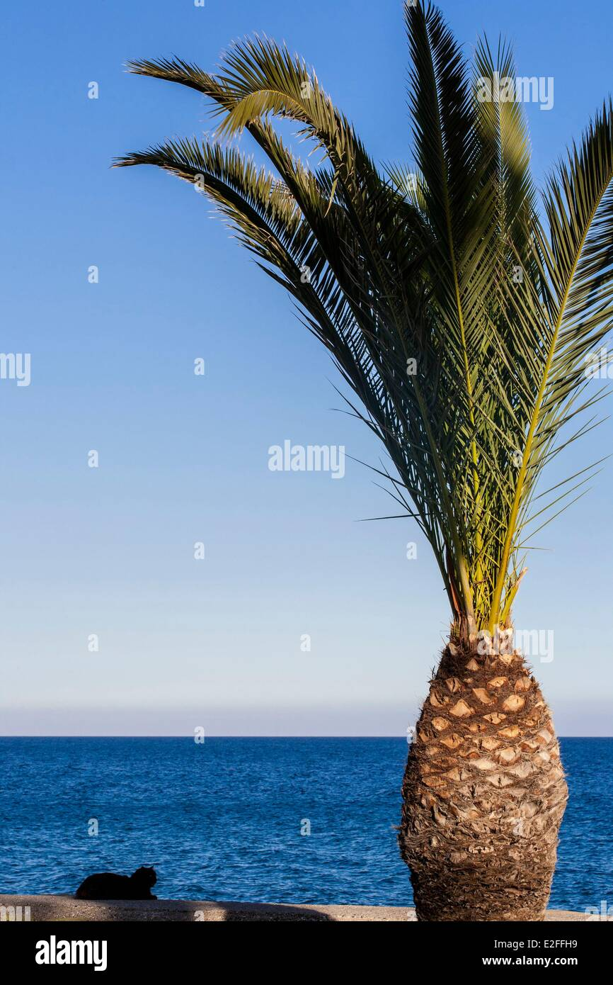 Cyprus, Limassol, seafront promenade - Stock Image