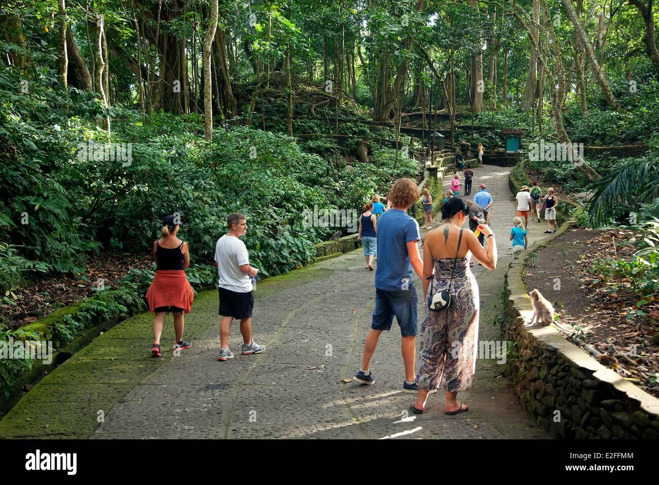 Indonesia, Bali, Ubud, Monkey Forest - Stock Image