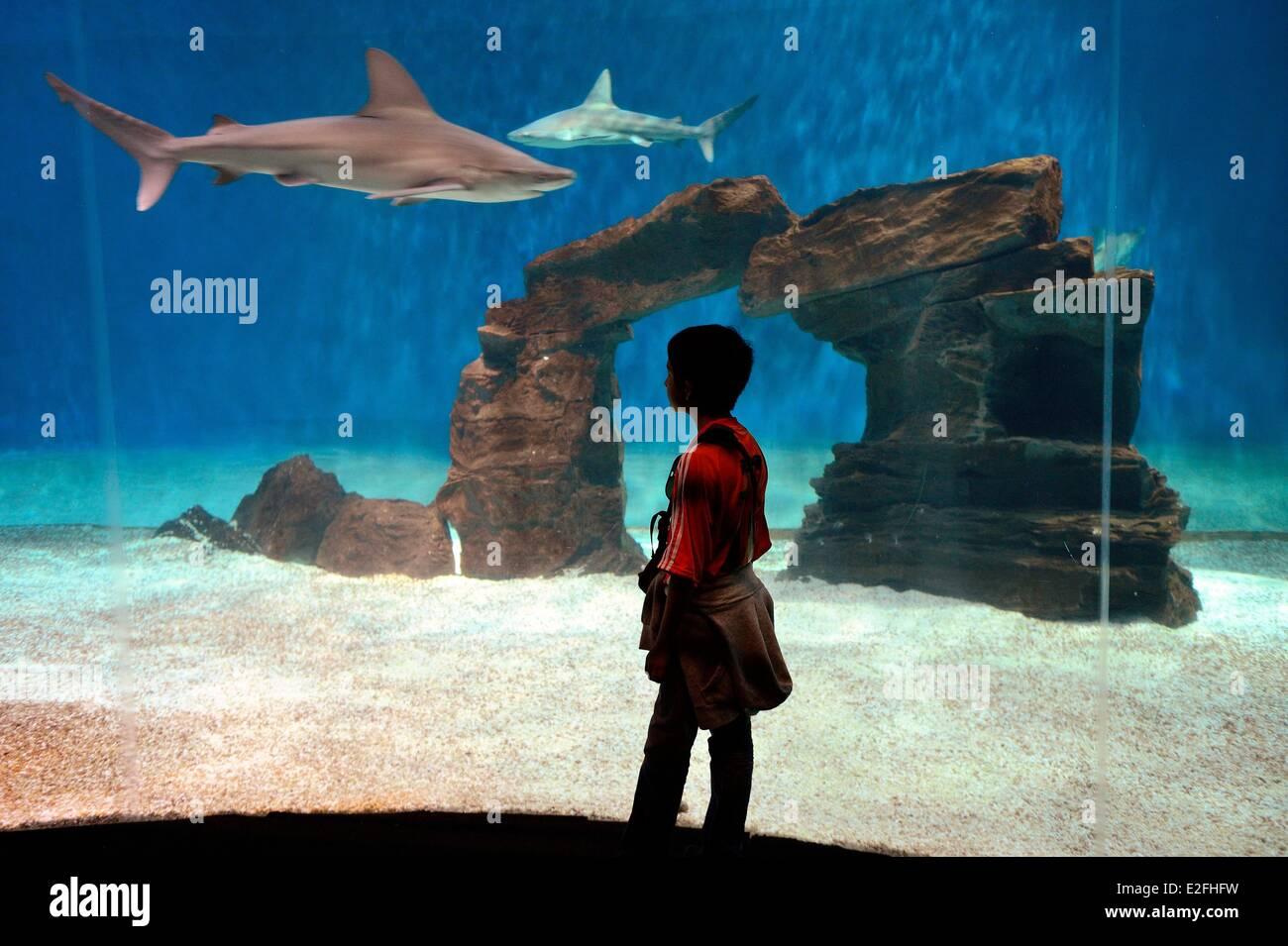 Italy, Liguria, Genoa, Porto Antico, the Aquarium of Genoa is the largest aquarium in Italy and among the largest - Stock Image
