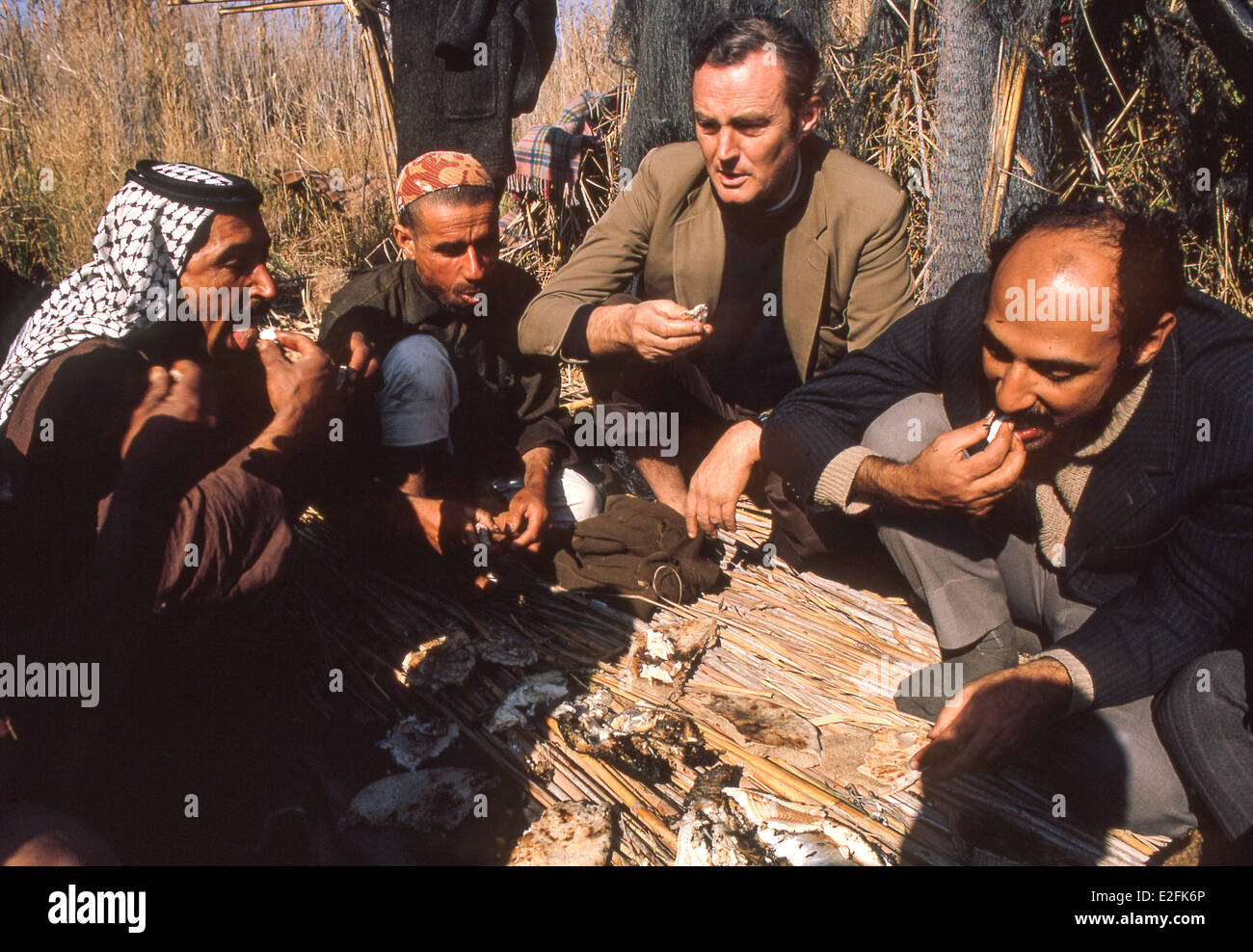 English journalist and writer Gavin Young, former Observer foreign correspondent eats with Marsh Arabs in the Iraq - Stock Image