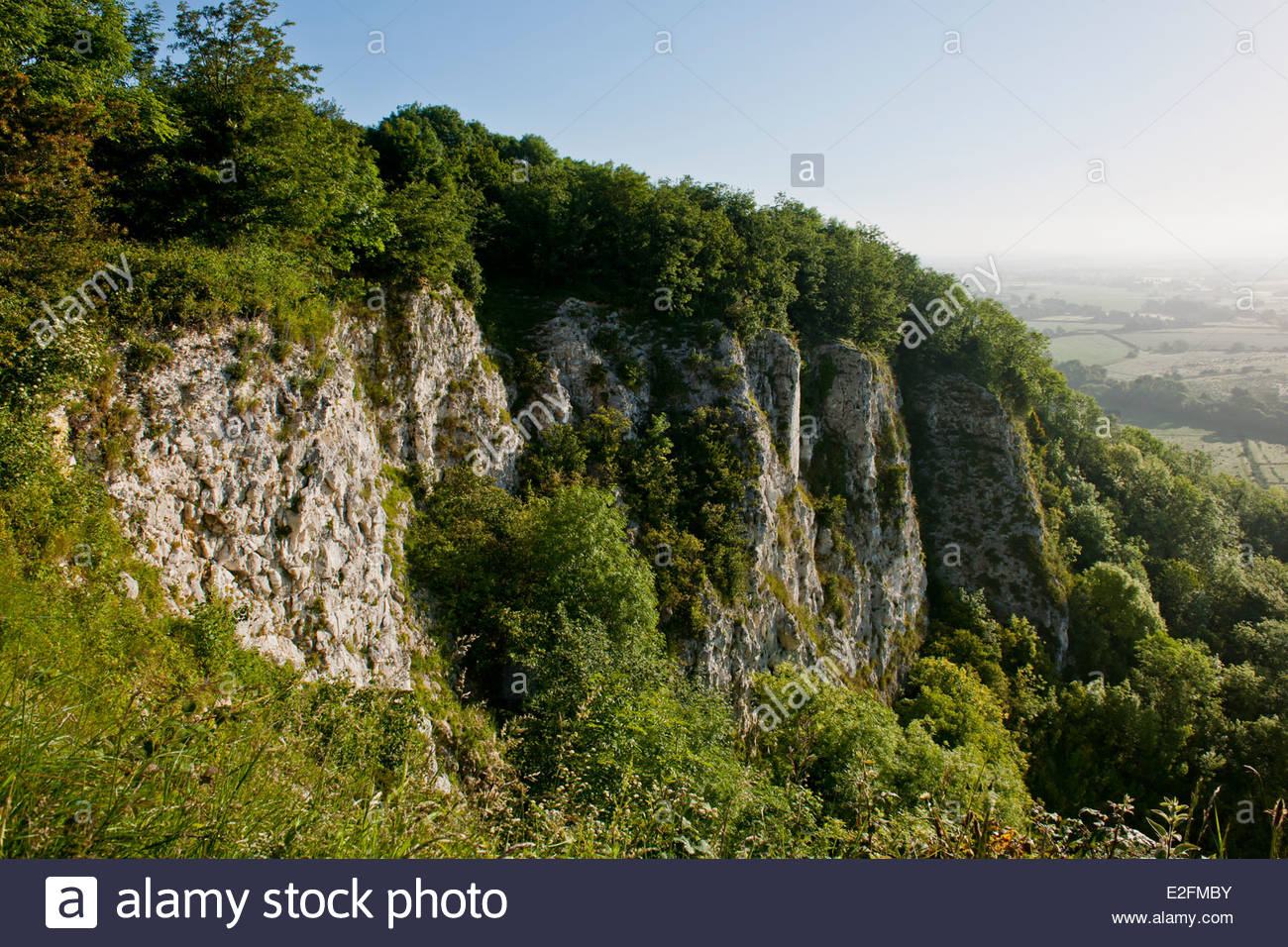 Offham chalk pit East Sussex England disused South Downs SSSI landscape wild nature reclaimed roost rooks birds - Stock Image