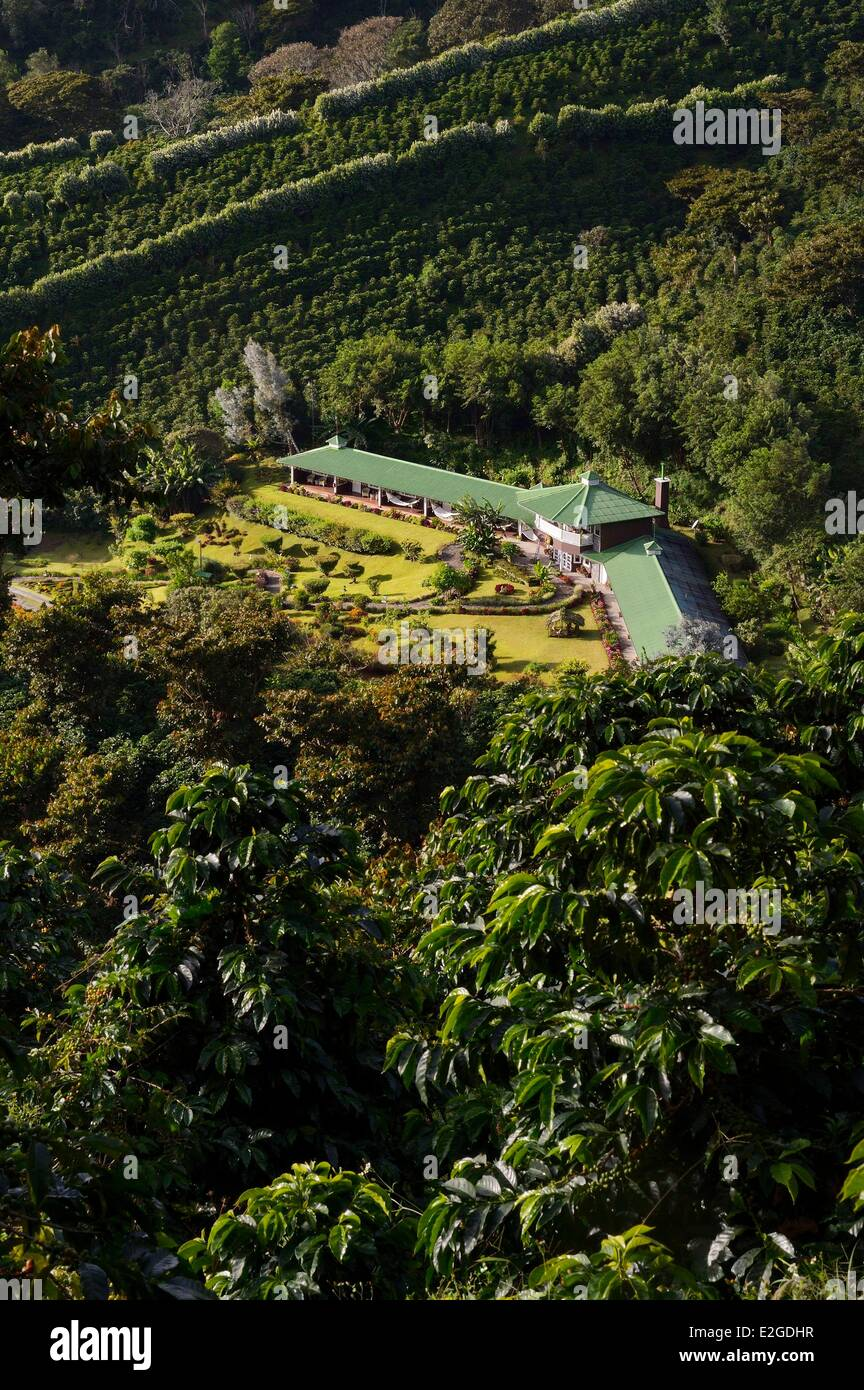Panama Chiriqui province Boquete Coffee Plantation Finca Lerida on slopes of Volcan Baru hotel - Stock Image