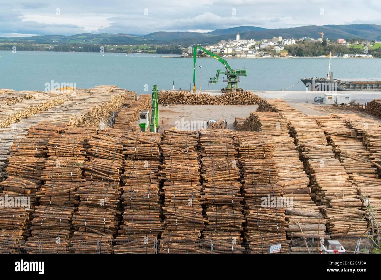 Spain Galicia Cantabrian coast Ribadeo port wood of Tasmanian Blue Gum Southern Blue Gum or Blue Gum (Eucalyptus - Stock Image
