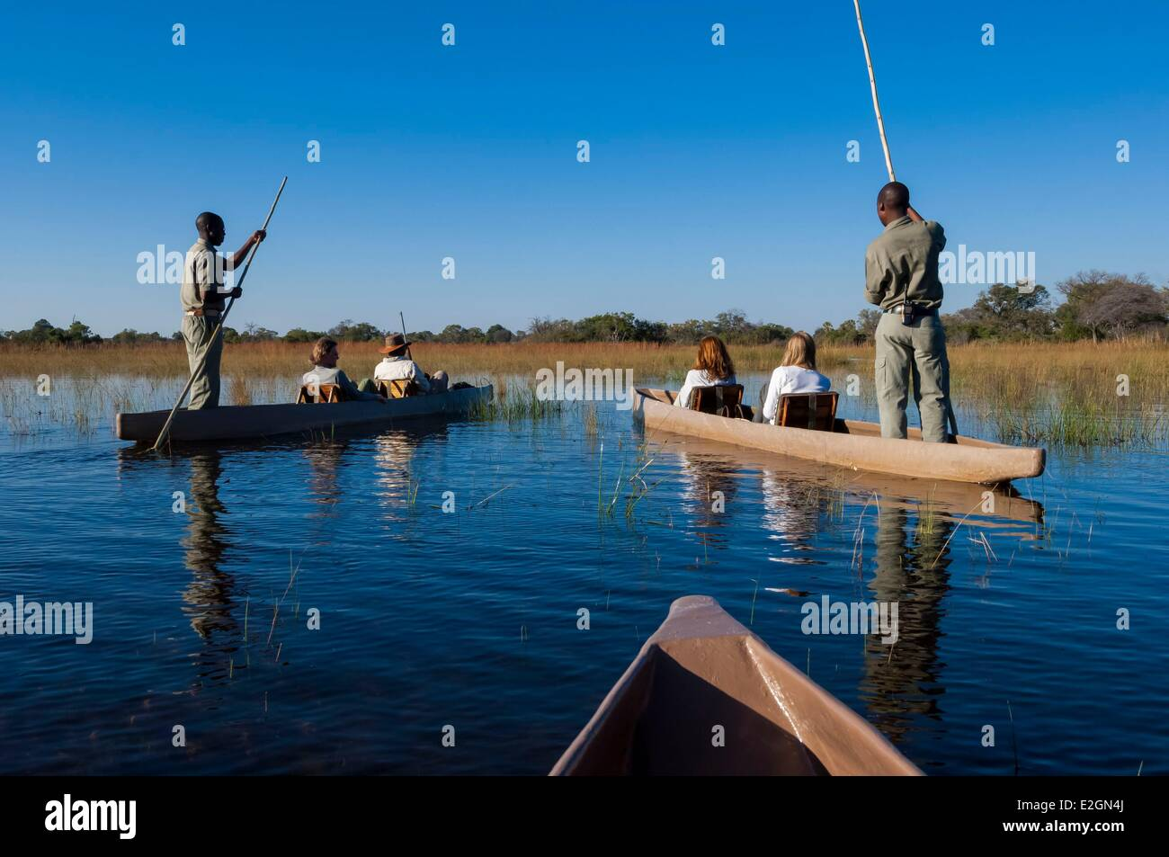 Botswana North West District Okavango Delta Abu Lodge safari - Stock Image