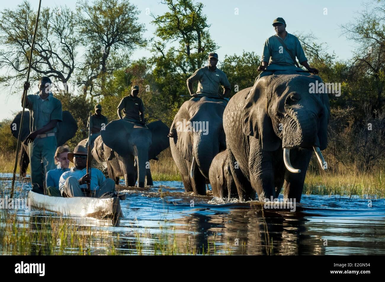 Botswana North West District Okavango Delta Abu Lodge safari on elephant back and by canoe - Stock Image