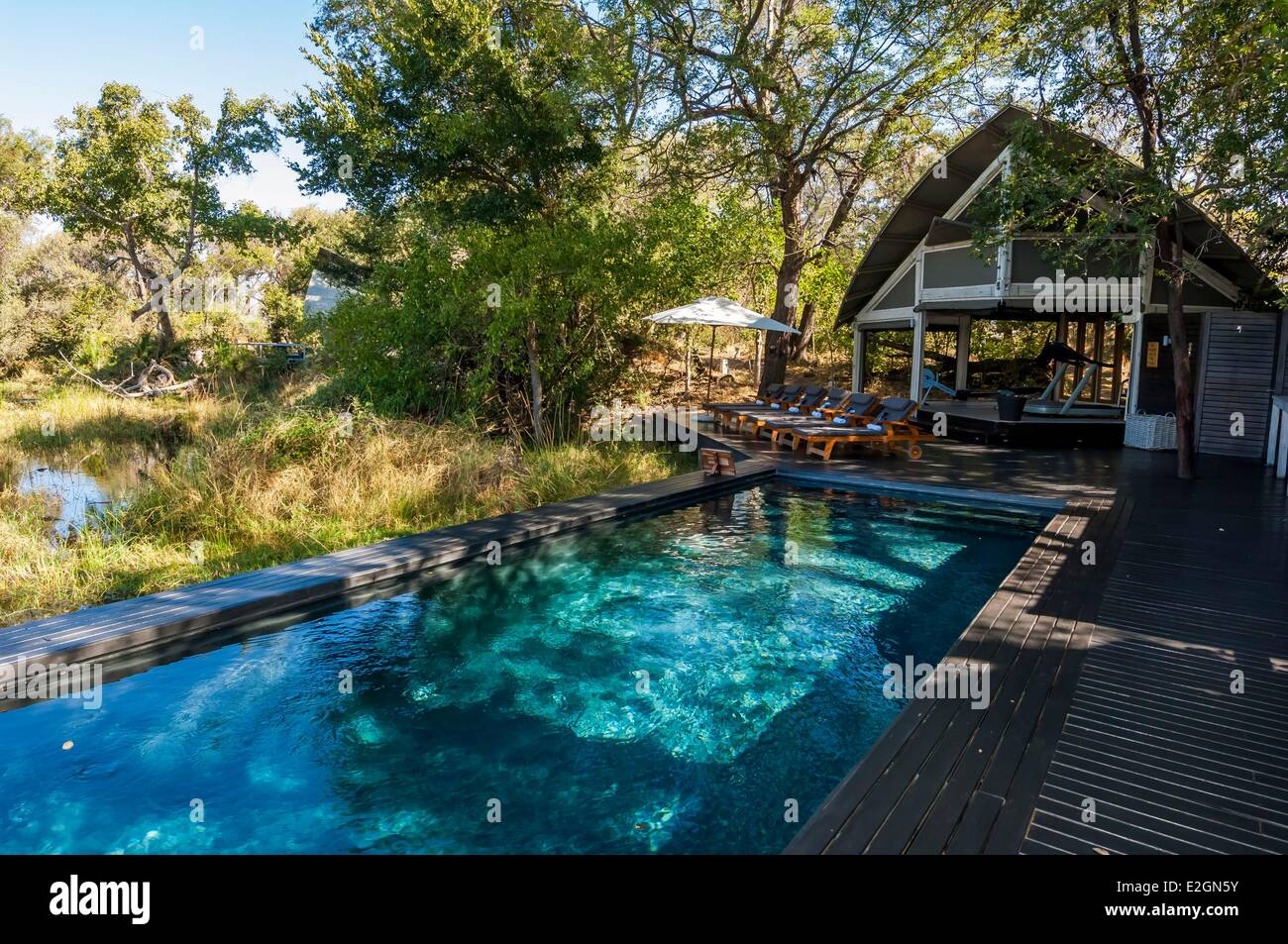 Botswana North West District Okavango Delta Abu Lodge deck and pool - Stock Image