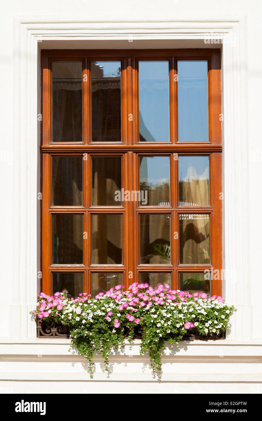 Flower box below a window on an apartment building - Stock Image