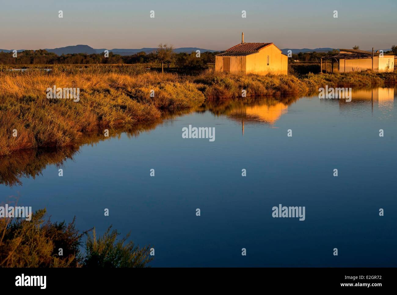 France Herault Camargue Sunrise on Etang de l'Or - Stock Image