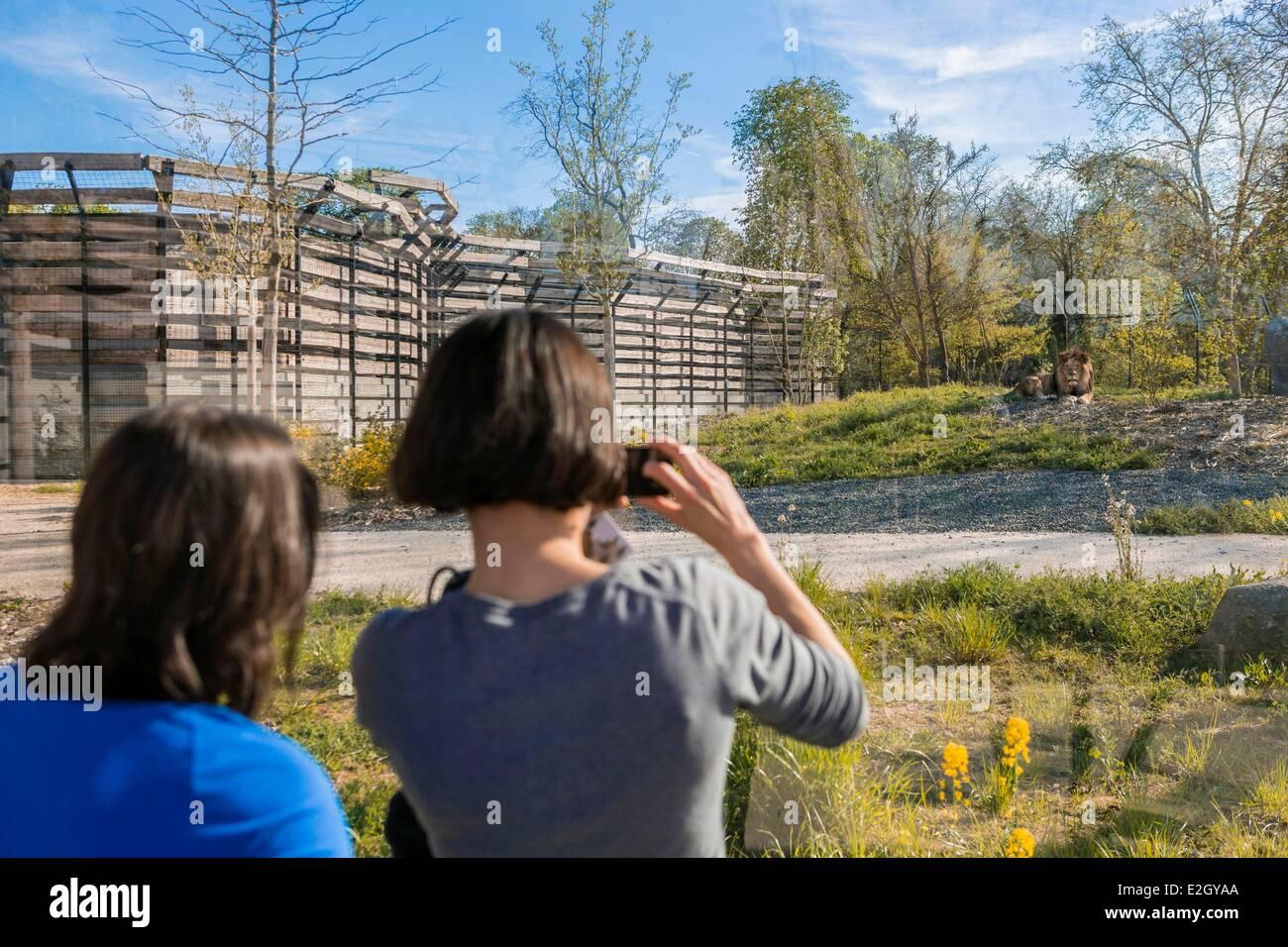 France Paris Paris Zoological Park (Zoo de Vincennes) - Stock Image