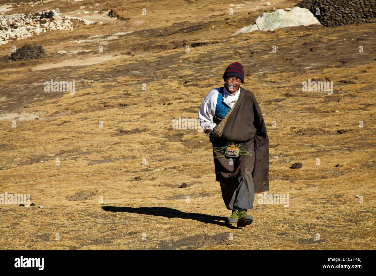China Tibet yaks shepherd on Shogula pass (5300m) on Lhasa to Shigatze road - Stock Image