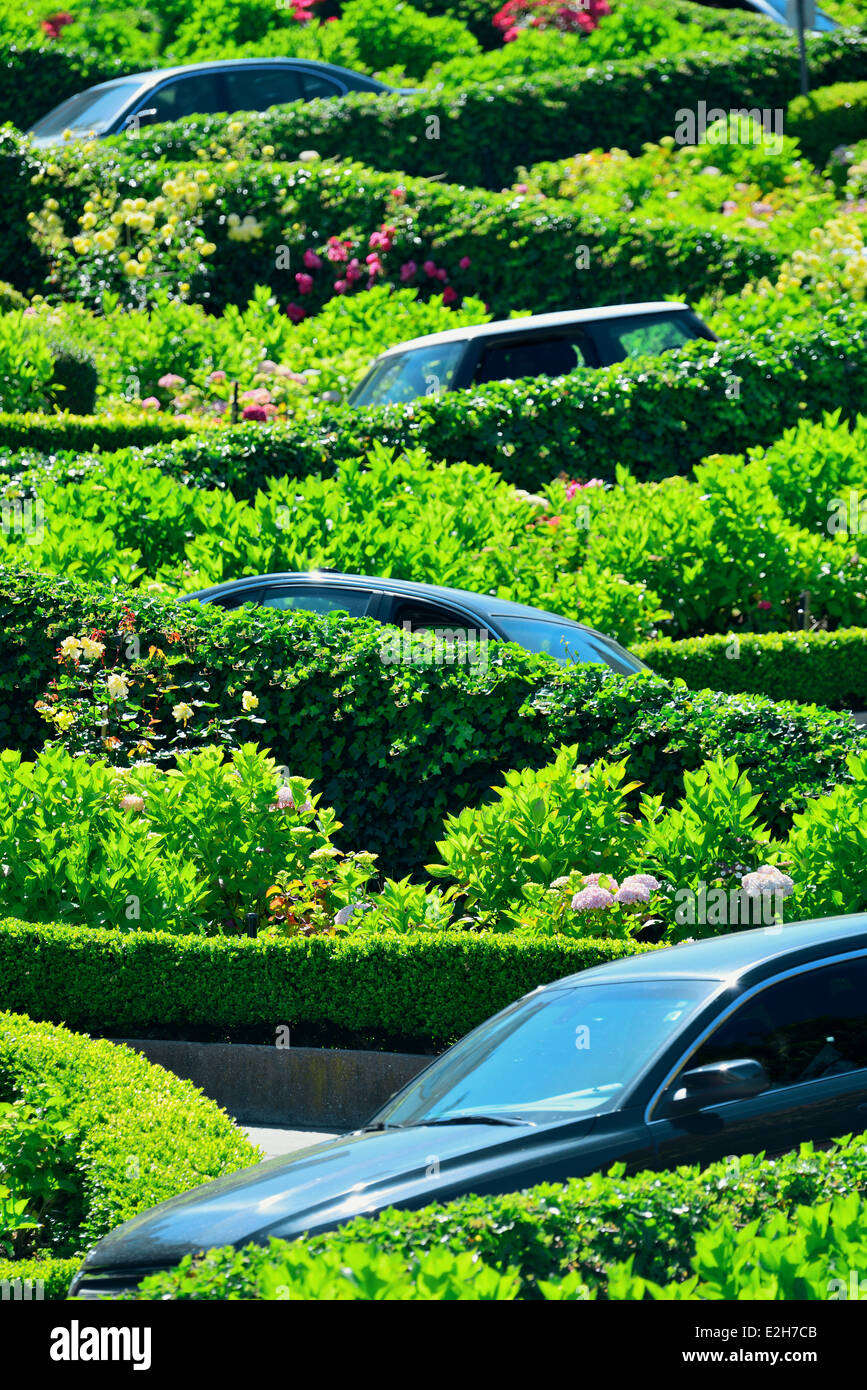 San Francisco Lombard Street with car top visible - Stock Image