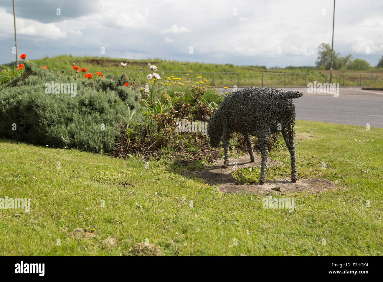 Bicester traffic roundabout sheep models - Stock Image