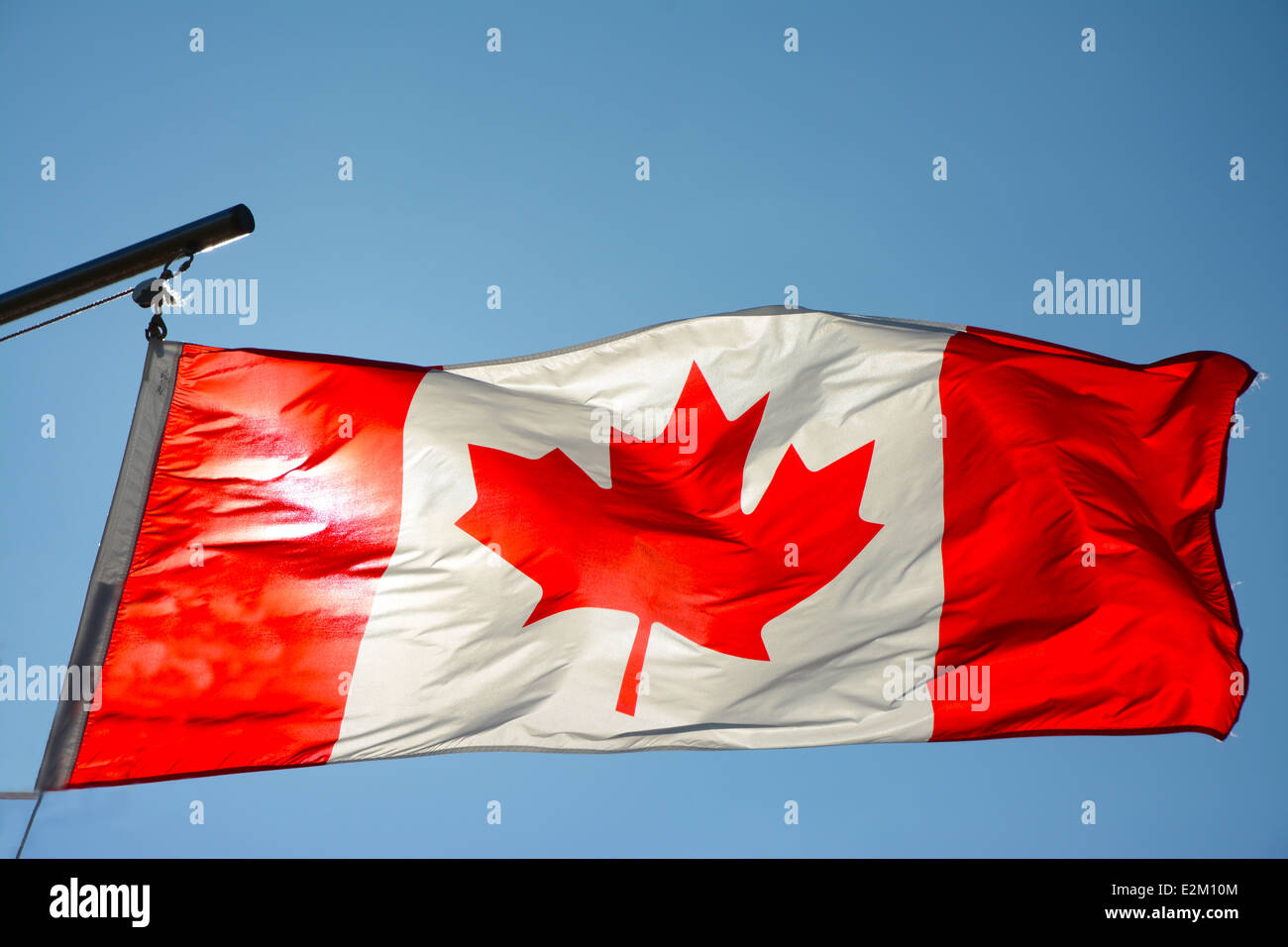 Canadian Flag in the wind - Stock Image