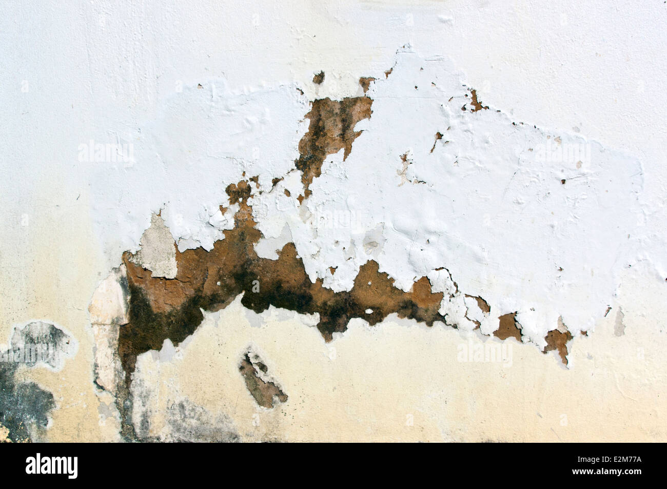 exterior wall with peeling paint indicating rising damp - Stock Image