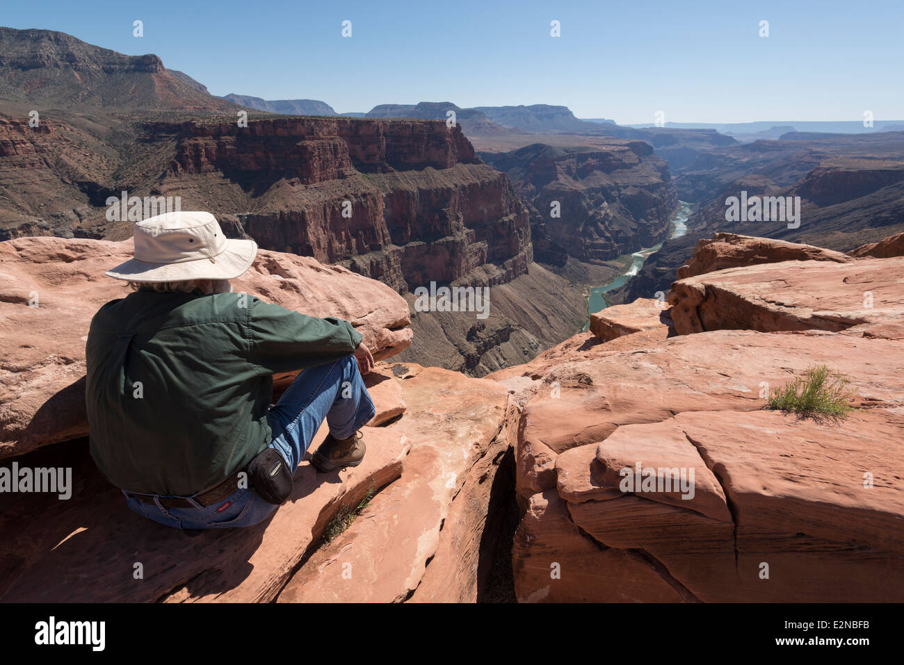 Volunteer ranger looking down at Colorado River gorge from Toroweap Overlook in Grand Canyon National Park, Arizona. Stock Photo